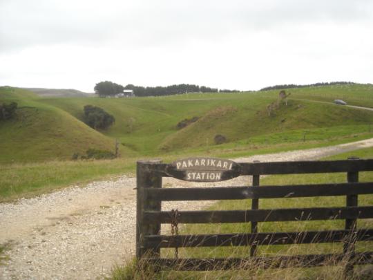 Whakaotirangi's garden site between Kawhia & Aotea